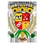 Logo da entidade Prefeitura Municipal Santa Rosa do Sul